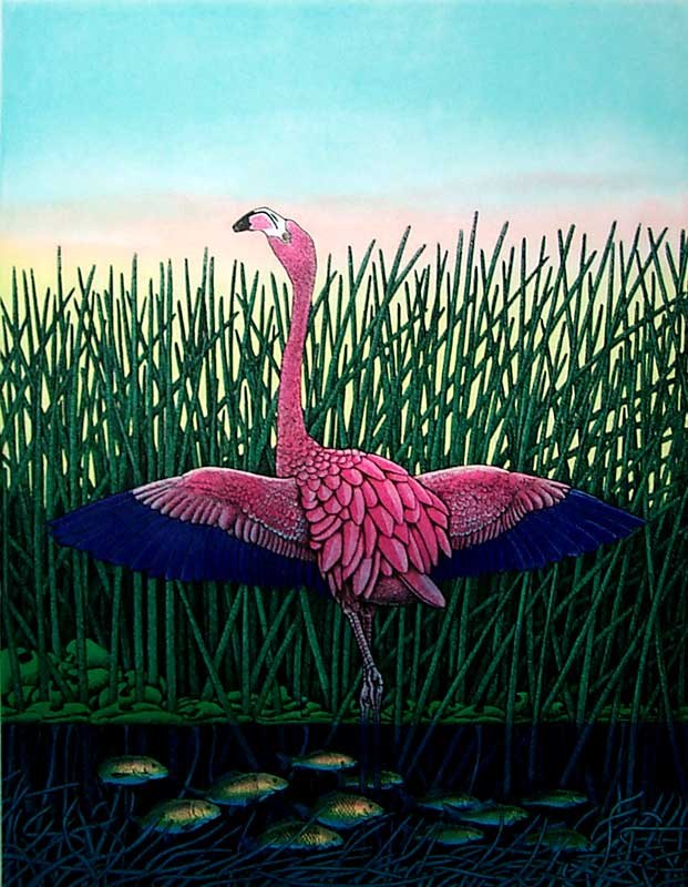 Flamingo-Flamenco