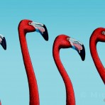 Flamingo Quartet